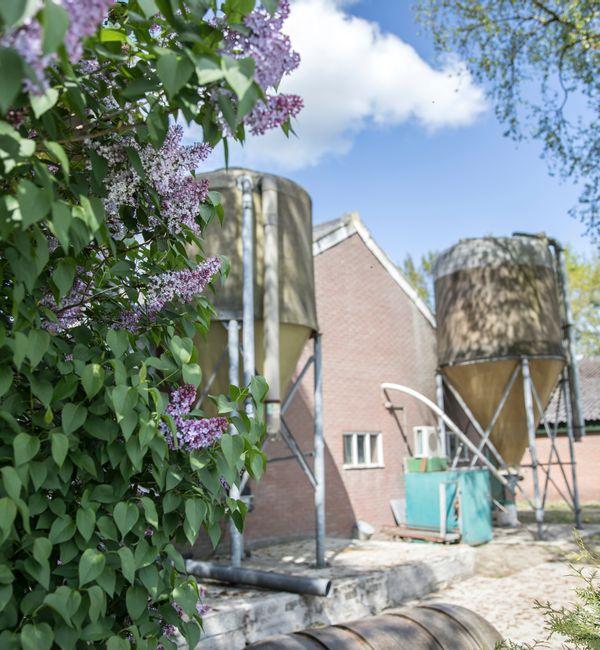 Van voormalig varkensbedrijf naar vier woningbouwkavels