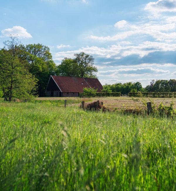 Landgoed in Denekamp is een samenleving op zich