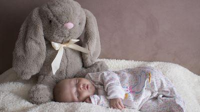 baby-3464621_1920